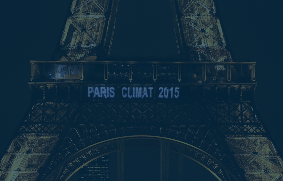 Cerno Capital – Supporting The Paris Agreement and the Task Force on Climate-Related Financial Disclosures (TCFD)